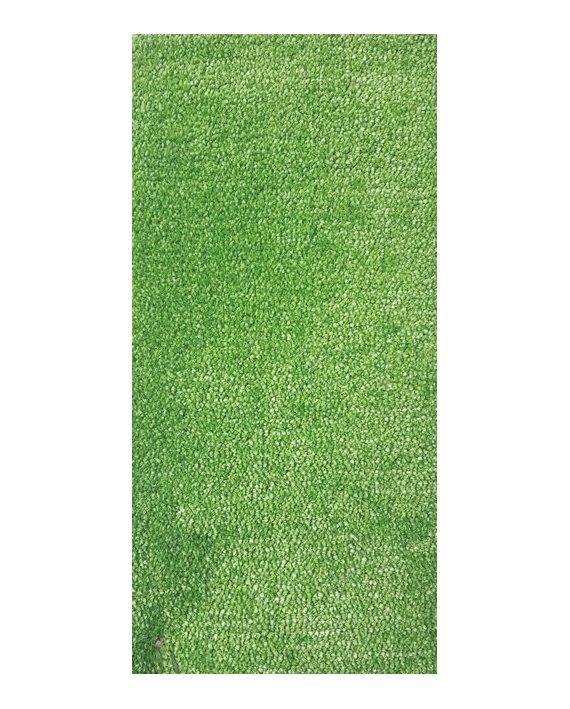 Festa Verde