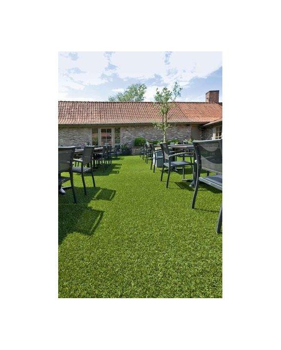 Gazon Iarba Evergreen