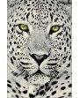 Covor Leopard