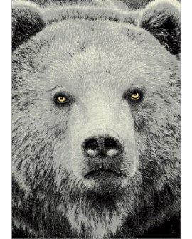 Covor Bear